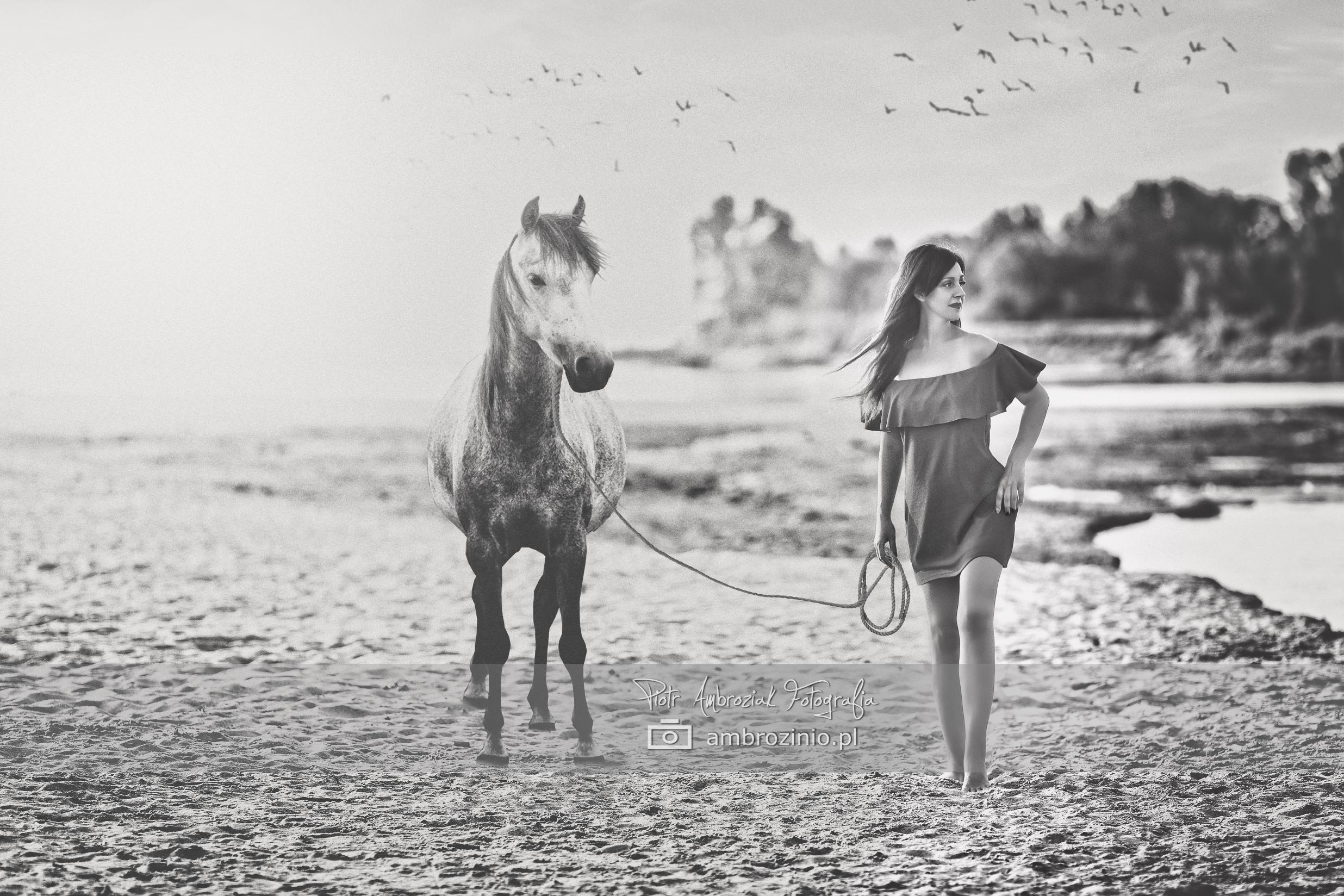sesja-portretowa-kon-fotograf-otwock-wisla